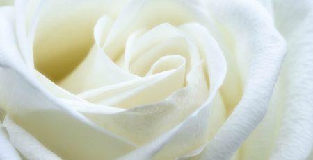 Hammonton, NJ - Motorcyclist Killed in Crash With Minivan on White Horse Pike